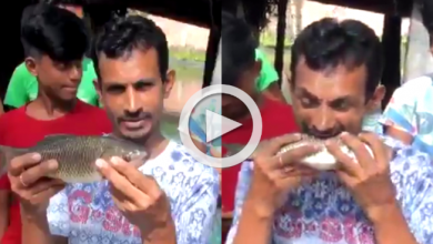 Photo of জ্যান্ত মাছ কামড়ে খাচ্ছেন বাঙালি যুবক, তুমুল ভাইরাল ভিডিও