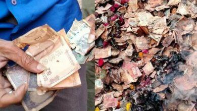 Photo of কালীঘাটে দাউ দাউ করে জ্বলছে বস্তাভর্তি টাকা, চাঞ্চল্য গোটা এলাকায়