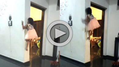Photo of দেখুন ভিডিও, সম্পূর্ণ খালি হাত-পায়ে তরতরিয়ে দেওয়াল বেয়ে উঠছে খুদে কন্যা, রিয়েল 'Spider Girl' বলছে নেটিজেনরা